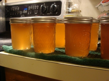 Finished crab apple jelly