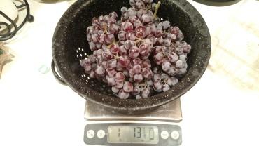 Grenache grapes.